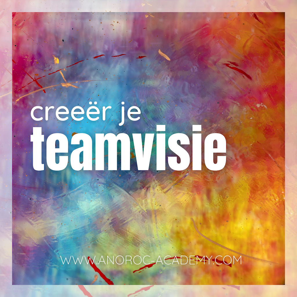 Creeer je teamvisie ANOROC academy