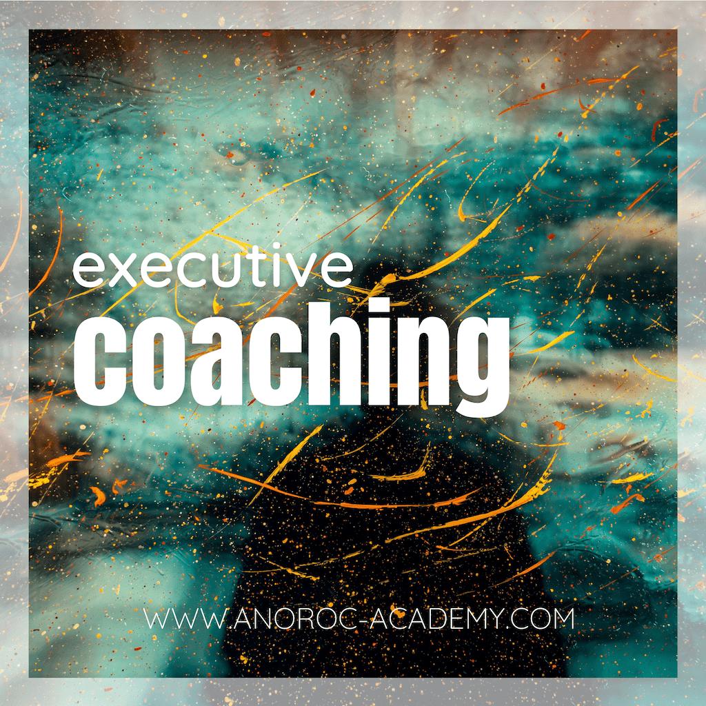 Executive Coaching ANOROC academy