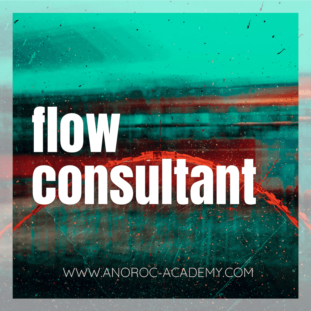 Flow Consultant ANOROC academy