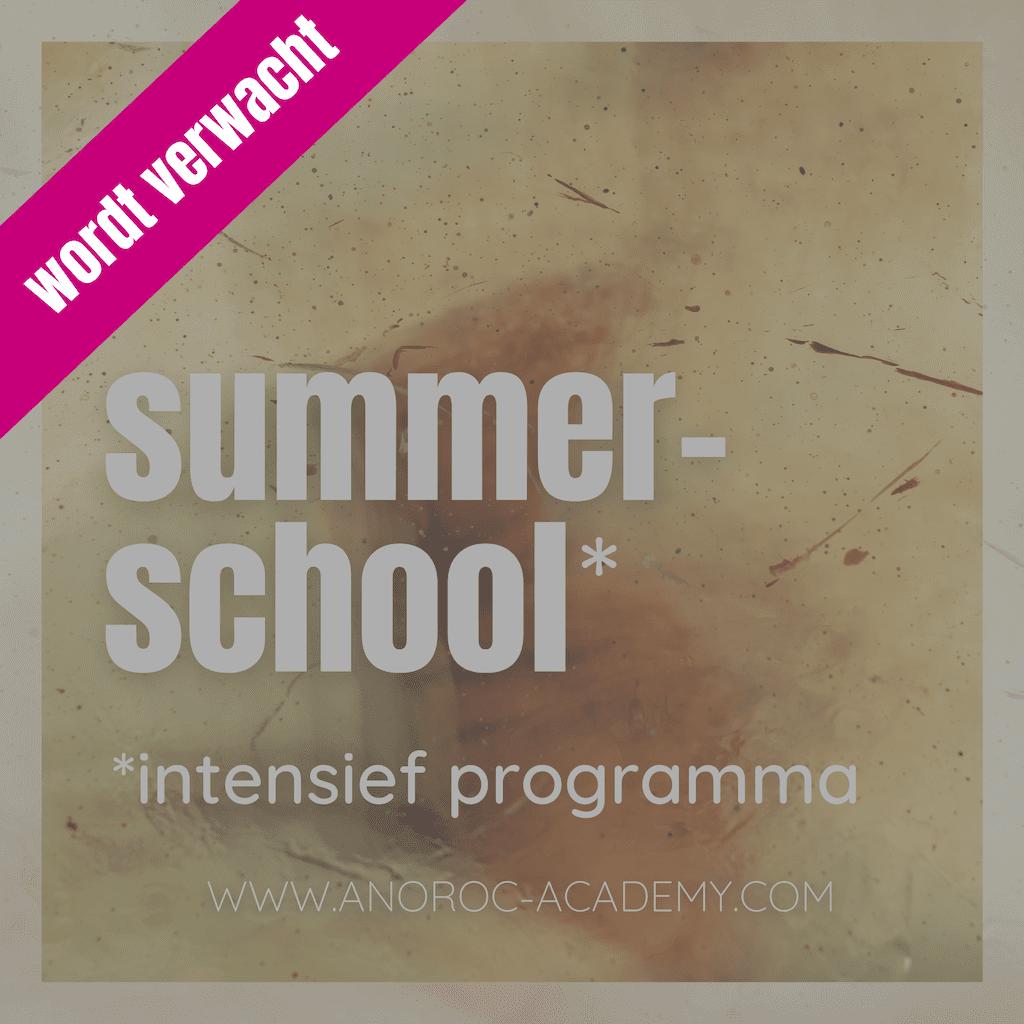 Summer School ANOROC academy